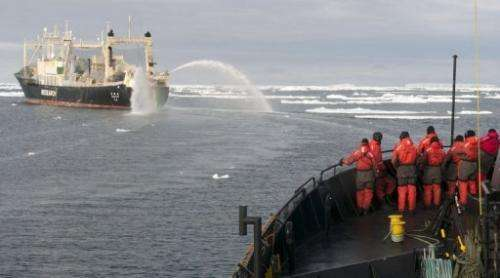 Sea Shepherd crewmembers look out at the Japanese ship Nisshin Maru in the Southern Ocean, on February 9, 2011