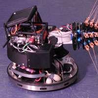 Shrew whiskers inspire ground-breaking robot design