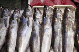 Spanish consumers prefer national fish