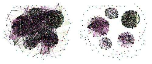 Stock market network reveals investor clustering