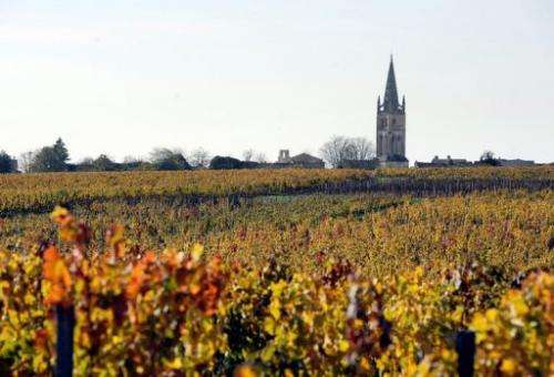 The 2012 vintage has a lot of variability, says the Federation des Grands Vins de Bordeaux