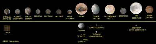 The Kuiper Belt at 20