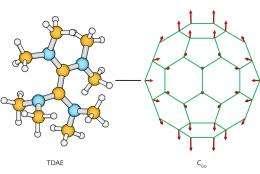 The origin of organic magnets