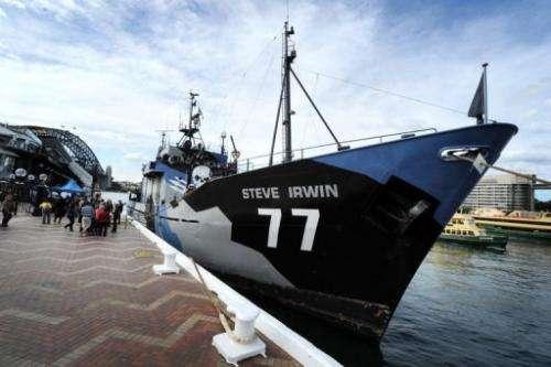 The Steve Irwin, the environmental activist group Sea Shepherd's main ship