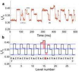 Tiny reader makes fast, cheap DNA sequencing feasible