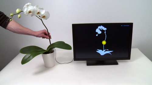 Touch your philodendron and control your computer (w/ Video)