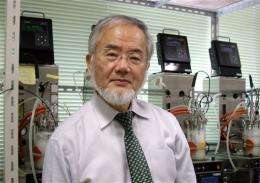 US computer graphics scientist wins Kyoto Prize