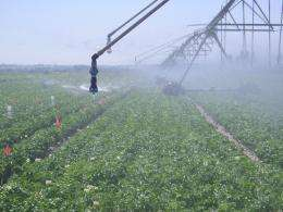 USDA irrigation research: Good to the last drop