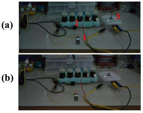 Graphene battery demonstrated to power an LED