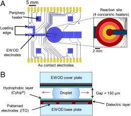 Of microchemistry and molecules: Electronic microfluidic device synthesizes biocompatible probes