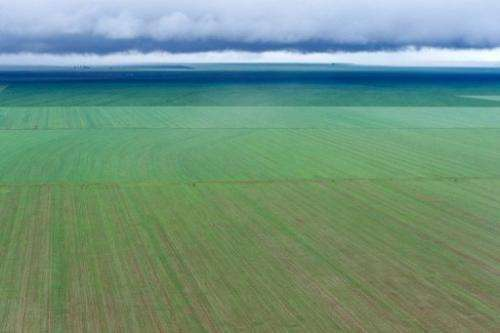 Aerial view of a soy bean field in Mato Grosso, Brazil, on March 27, 2012