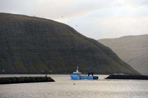 A fishing boat leaves the harbor of Vestmanna village on October 14, 2012 in the Faroe Islands