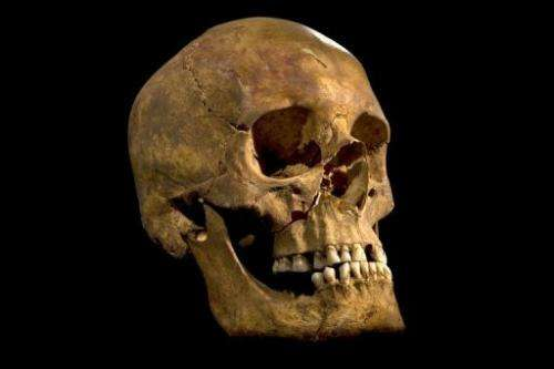 A picture released on February 3, 2013 shows the skull found in a car park in Leicester