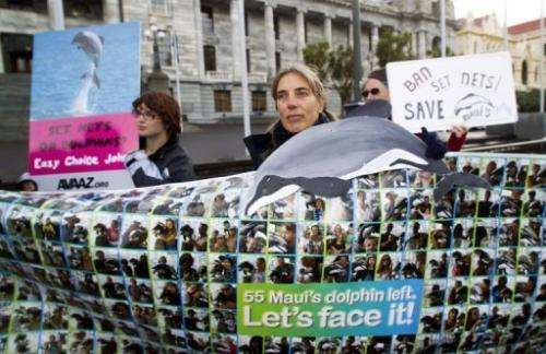 Campaigners attend a rally in Wellington to protect the critically endangered Maui's dolphin on May 2, 2012