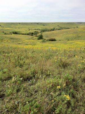 CU-Boulder-led team gets first look at diverse life below rare tallgrass prairies