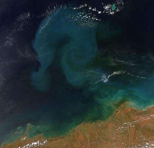 Cyclone rusty's rains stirred up sediment