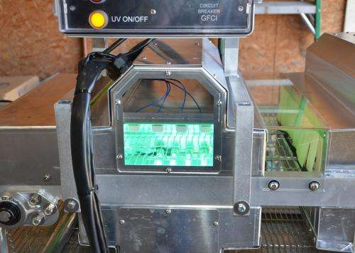 Egg-sanitizer machine could save millions of chicks annually