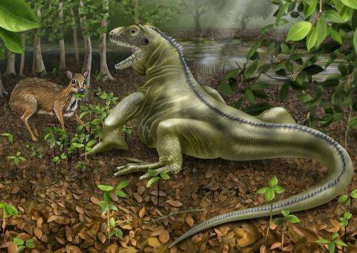 'Lizard King' fossil shows giant reptiles coexisted with mammals during globally warm past