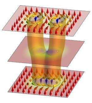 Magnetic monopoles erase data