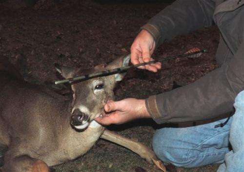 NJ biologists remove arrow from deer's head