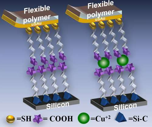 Researchers open door to advanced molecular electronic metrology