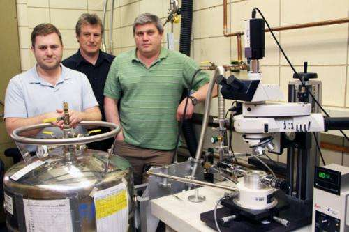 Resistivity switch is window to role of magnetism in iron-based superconductors