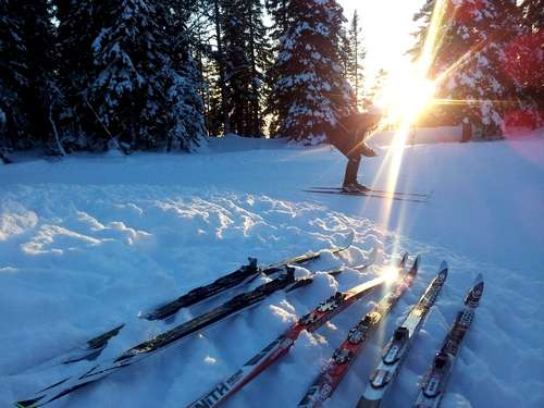 On the ski trail of success or failure