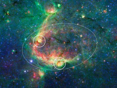 Spitzer sees Milky Way's blooming countryside