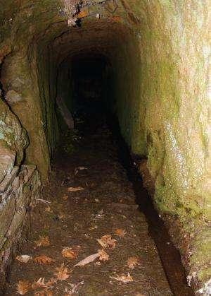 The underground adventures of the Mediterranean frog Rana iberica