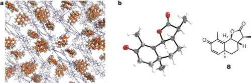 Researchers devise technique to allow X-ray crystallography of un-crystallized molecule groups