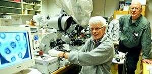 Classic microscopy reveals borrelia bacteria
