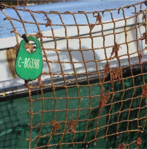 University of Toronto prize-winning technology reduces marine bio-fouling
