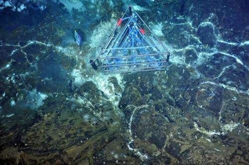 Cables, instruments installed in the deep sea off Pacific Northwest coast
