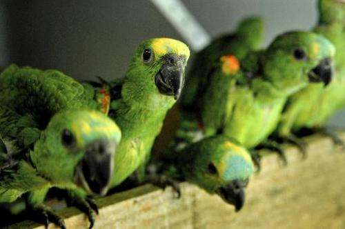 File picture for illustration shows