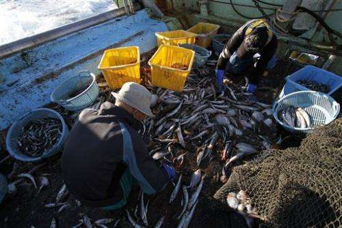 Fukushima crisis new blow to fishermen's hopes