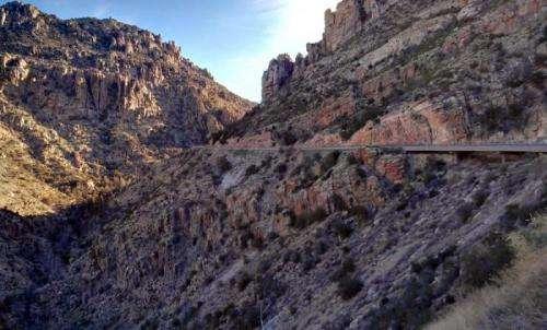 New scorpion discovery near metropolitan Tucson, Arizona
