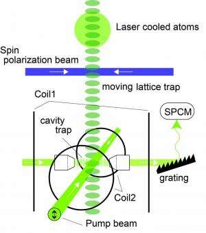 Quantum computing: Manipulating a single nuclear spin qubit of a laser cooled atom