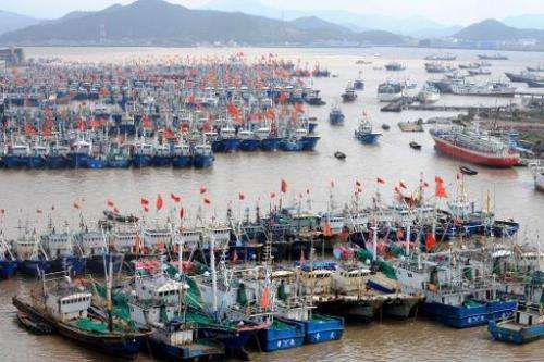 Fishing boats berth in Zhoushan port to avoid  powerful Typhoon Fitow in Zhoushan, in east China's Zhejiang province on October