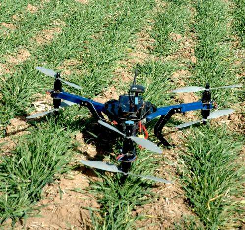 AgriLife Research scientist utilizes drone to detect wheat disease progression