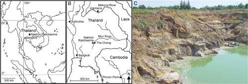 A new species of the hornless rhino found from the Late Miocene of Nakhon Ratchasima, Thailand