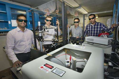 Shedding new light on the 'electron highways' of organic solar cells