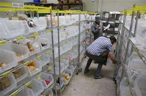 Tech startups create virtual farmers markets