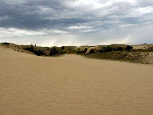 Image taken on September 1, 2013 shows sand dunes at Spirit Sands, located in the vast Spruce Woods Provincial Park