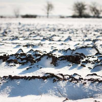 Scientists uncover the secret life of frozen soils