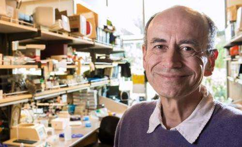 This handout photo shows neuroscientist and Nobel Prize winner Thomas Südhof, MD, a professor of molecular and cellular physiolo