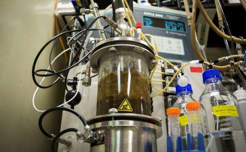 Researchers turn corn stalks and leaves into better biofuel