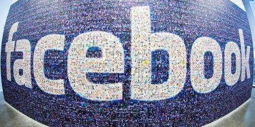 A big logo created from pictures of Facebook users worldwide in the company's Data Center, its first outside the US on November