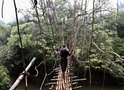A girl walks on a makeshift bridge near the town of Luvungi on September 4, 2010