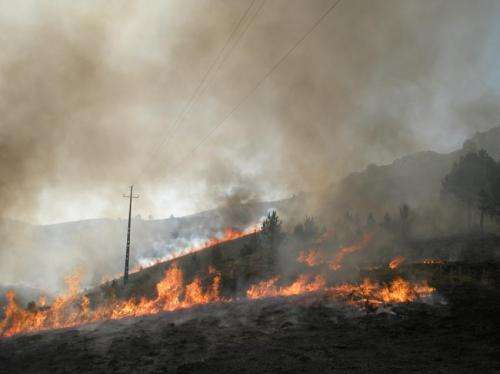 AGU: Wildfires can burn hot without ruining soil, new study finds