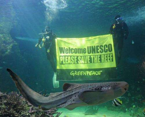 A leopard shark swims past Sydney Aquarium divers urging UNESCO to save the Great Barrier Reef on March 5, 2012